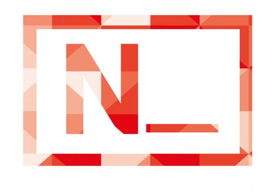 logo n_ copia